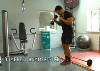 DUMBBELL HAMMER CURLS