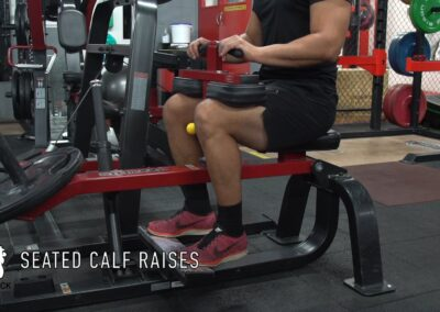 SEATED CALF RAISES-